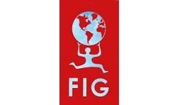 logo_FIG