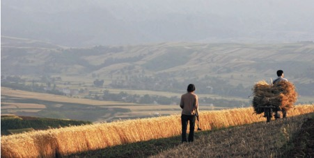 Nature paper points out the need to revitalize the countryside…